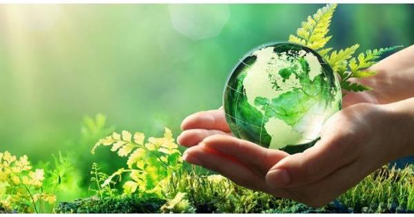 Custodire il Creato: sostenibilità ecologica e sociale
