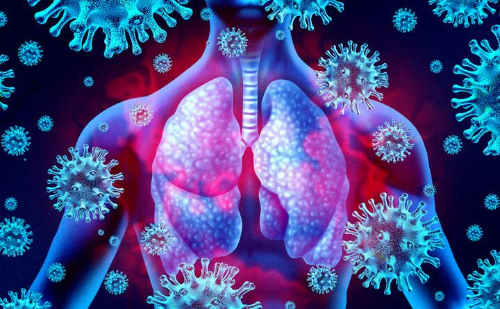 Covid-19: l'attesa pandemia zoonotica del terzo millennio. Attualità e prospettive